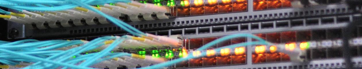 WordPress Network Engineering